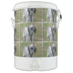 Adorable Black and White English Setter Dog Beverage Cooler