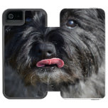 Adorable Cairn Terrier Wallet Case For iPhone SE/5/5s