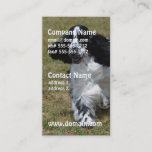 Adorable English Cocker Spaniel Business Card