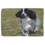 Adorable English Cocker Spaniel Towel