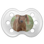 Adorable Irish Setter Pacifier