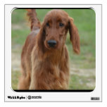 Adorable Irish Setter Wall Decal
