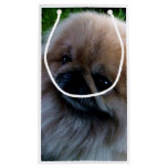 Adorable Pekingese Puppy Small Gift Bag