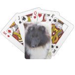 Adorable Sheltie Playing Cards