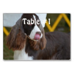 Adorable Springer Spanial Table Number