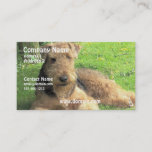 Airedale Terrier Dog Business Card