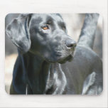 Alert Black Lab Mouse Pad