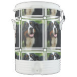 Baby Bernese Mountain Dog Beverage Cooler
