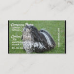 Black and White Puli Dog Business Card