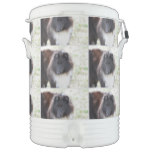 Black and White Sheltie Beverage Cooler