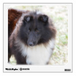 Black and White Sheltie Wall Sticker