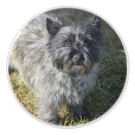 Black Cairn Terrier Ceramic Knob