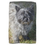 Black Cairn Terrier Hand Towel