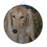 Blonde Saluki Dog Dartboard With Darts