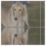 Blonde Saluki Dog Fabric