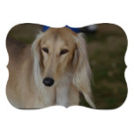 Blonde Saluki Dog Invitation