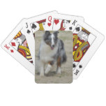 Blue Merle Australian Shepherd Playing Cards