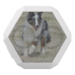 Blue Merle Australian Shepherd White Bluetooth Speaker