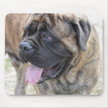 Brindle Mastiff Mouse Pad