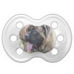 Brindle Mastiff Pacifier