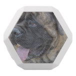Brindle Mastiff White Bluetooth Speaker