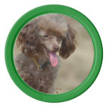 Brown Toy Poodle Set Of Poker Chips