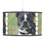 Classic Boston Terrier Dog Ceiling Lamp