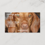 Coon Hound Business Card