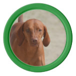 Coonhound Poker Chips