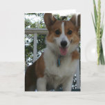 Corgi Puppy Dog Greeting Card