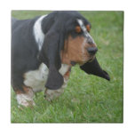 Cute Basset Hound Ceramic Tile