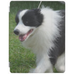 Cute Border Collie Puppy iPad Smart Cover