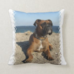 Cute Boxer Dog  Pillow