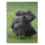 Cute English Cocker Spaniel Notebook