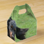 Cute Gordon Setter Favor Box
