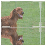 Cute Irish Setter Fabric