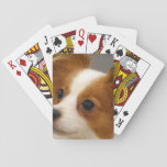 Cute Papillon Dog Playing Cards