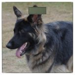 Cute Shiloh Shepherd Bathroom Scale