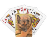 German Shepherd with One Floppy Ear Playing Cards