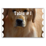 Golden Pup Table Number