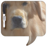 Gorgeous Golden Retriever Dry Erase Board