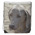 Gorgeous Weimaraner Drawstring Backpack