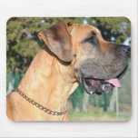 Great Dane Photo Mouse Pad