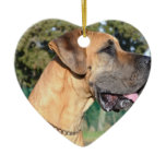 Great Dane Photo Ornaments