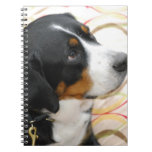 Greater Swiss Mountain Dog Notebook