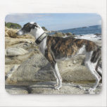 Greyhound Photographs Mouse Pad