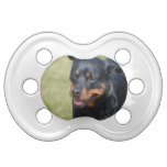 Guileless Rottweiler Pacifier
