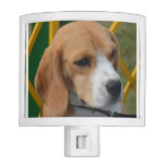 Lovable Beagle Night Light