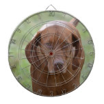 Lovable Vizsla Dartboard With Darts