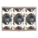 Newfoundland Dog Throw